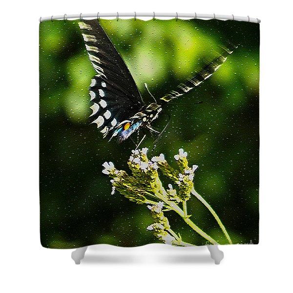 Flattering Flutter Shower Curtain