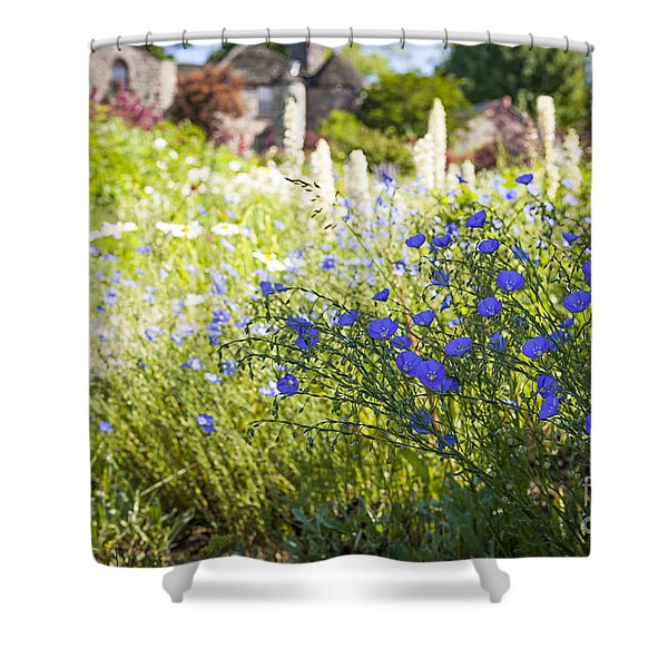Flax Flowers In Summer Garden Shower Curtain