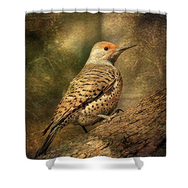 Flicker In A Tree Shower Curtain