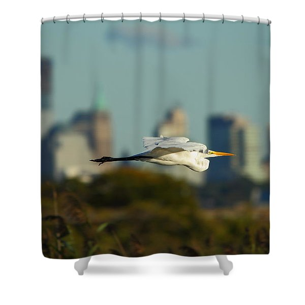 Flight Of The Great Egret Shower Curtain