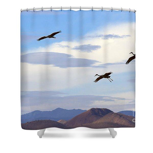 Flight Of The Sandhill Cranes Shower Curtain