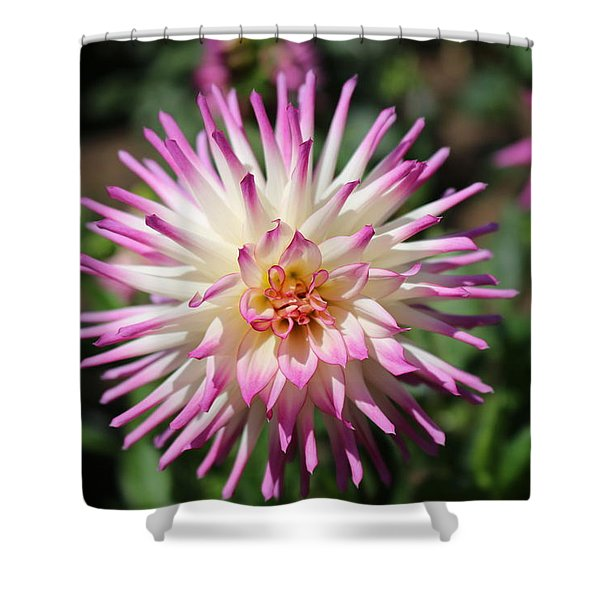 Floral Beauty 3  Shower Curtain