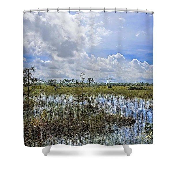 Florida Everglades 0173 Shower Curtain
