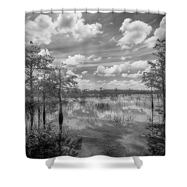 Florida Everglades 5210bw Shower Curtain