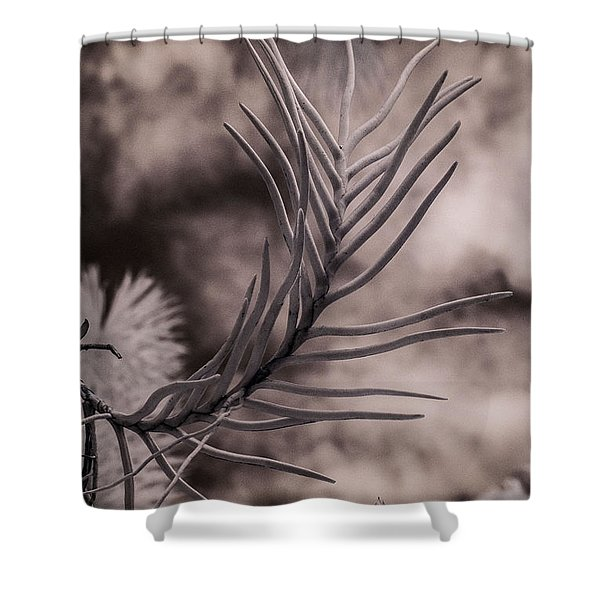 Florida Flora 1 Shower Curtain