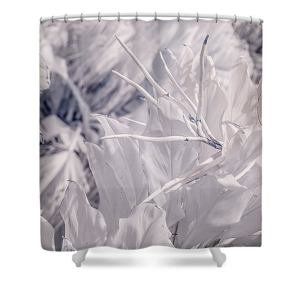 Florida Whites Shower Curtain