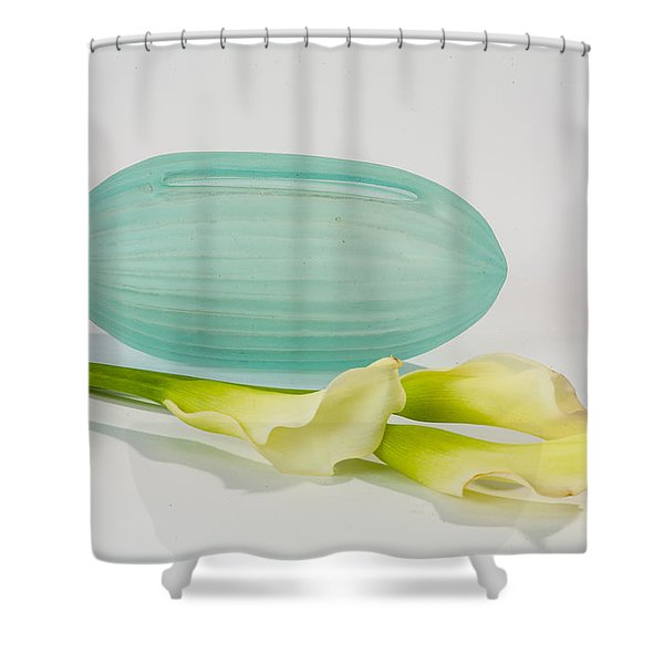 Flowers In Vases 4 Shower Curtain