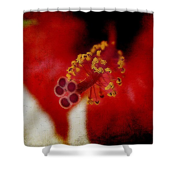 Flower Abstract Shower Curtain