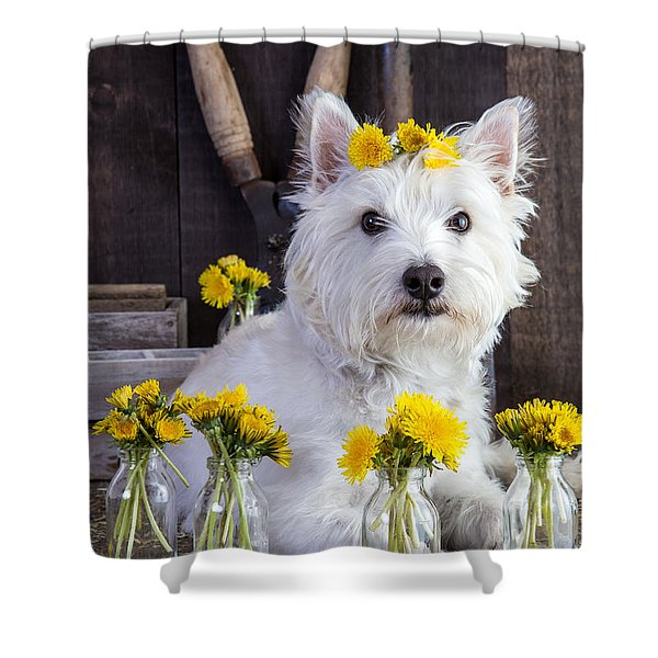 Shower Curtain featuring the photograph Flower Child by Edward Fielding
