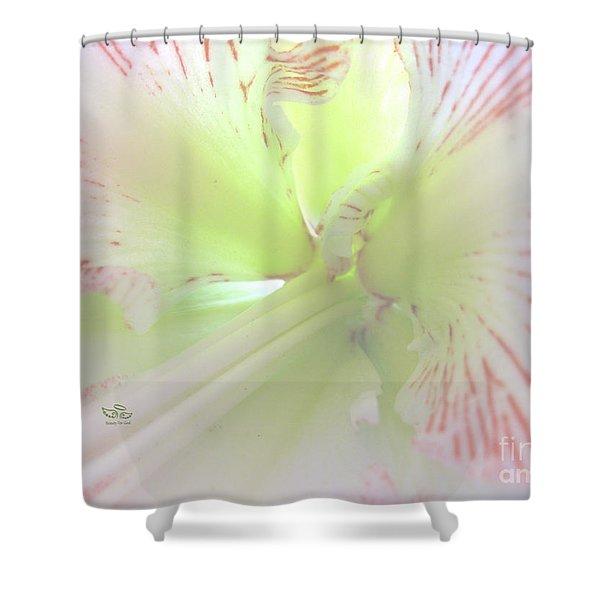Flower Of Light Shower Curtain