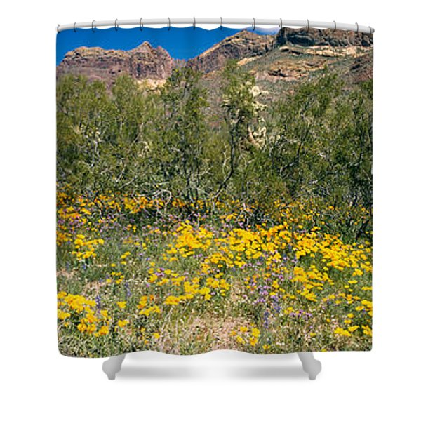 Flowers In A Field, Organ Pipe Cactus Shower Curtain