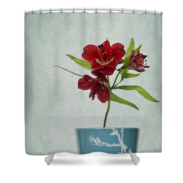 Flowers In Blue Vase Shower Curtain