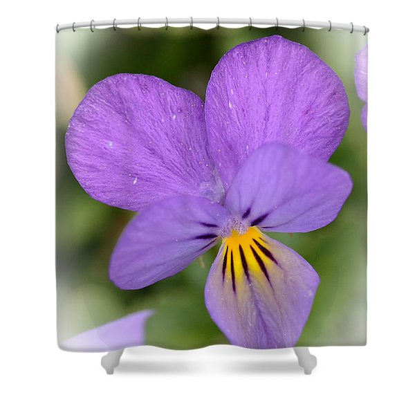 Flowers That Smile Shower Curtain