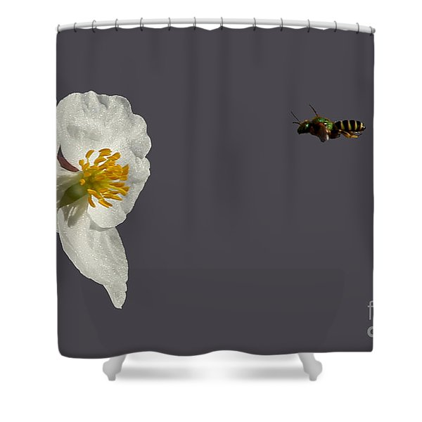 Flying In For Breakfast Shower Curtain