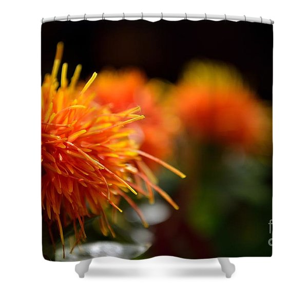 Shower Curtain featuring the photograph Focused Safflower by Scott Lyons