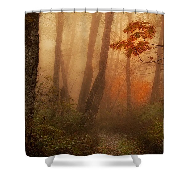 Shower Curtain featuring the photograph Foggy Autumn by Mary Jo Allen