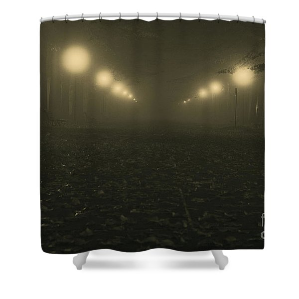 Foggy Night In A Park Shower Curtain