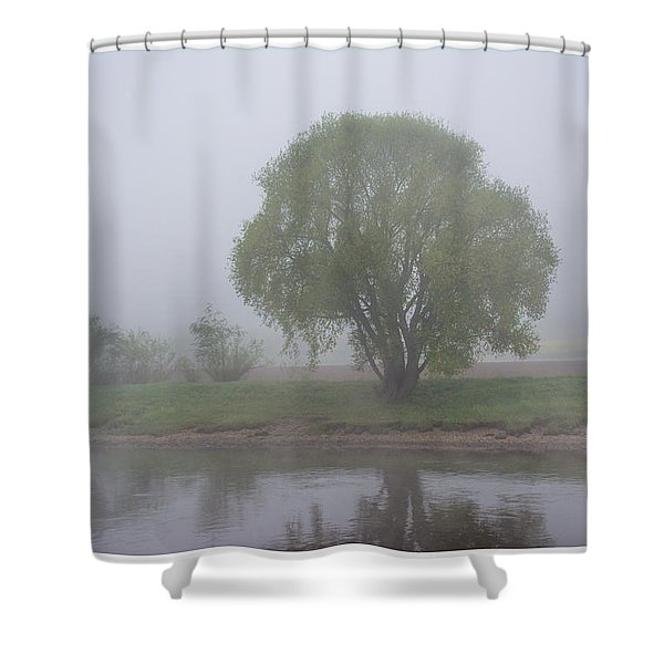 Foggy Elbe Tree Shower Curtain
