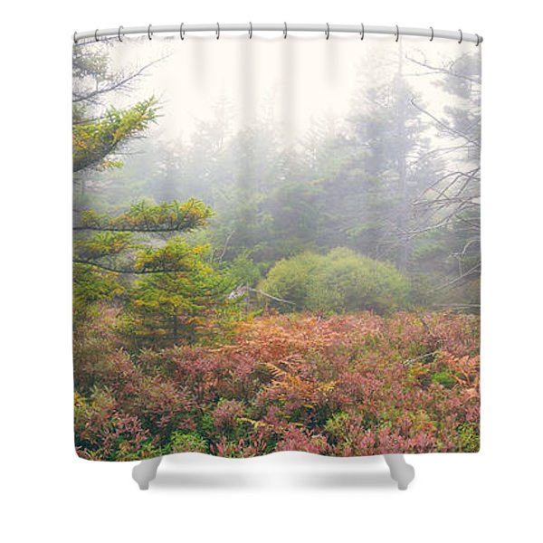 Foliage Fog Panorama Shower Curtain