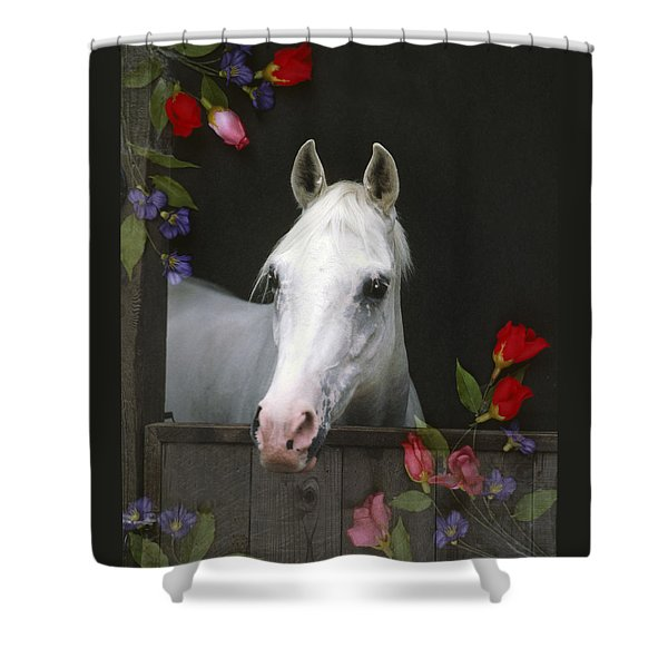 For The Roses Shower Curtain