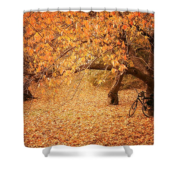 For Two - Autumn - Central Park Shower Curtain