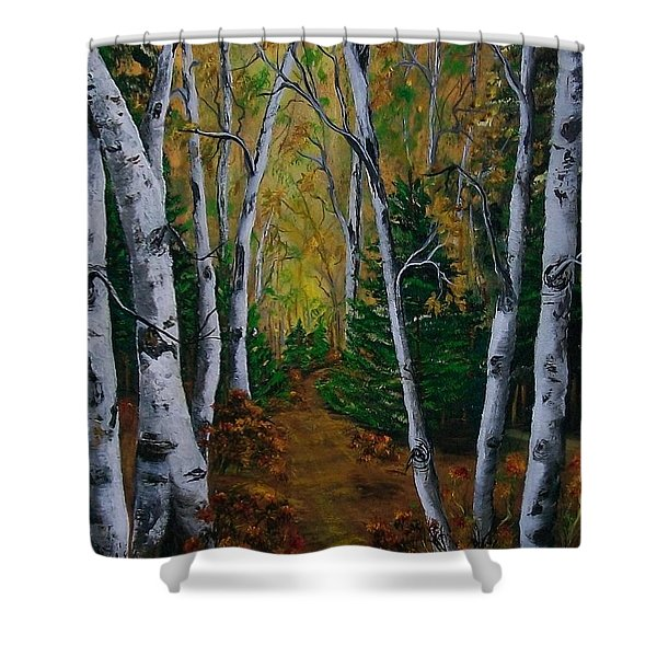 Birch Tree Forest Trail  Shower Curtain