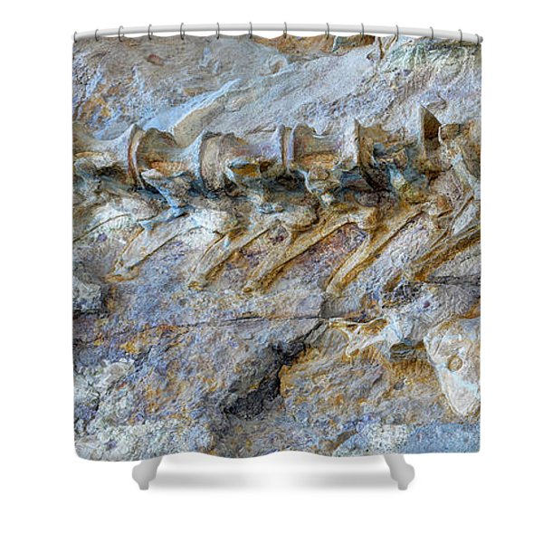 Fossilized Dinosaur Backbone - Dinosaur National National Monument Shower Curtain