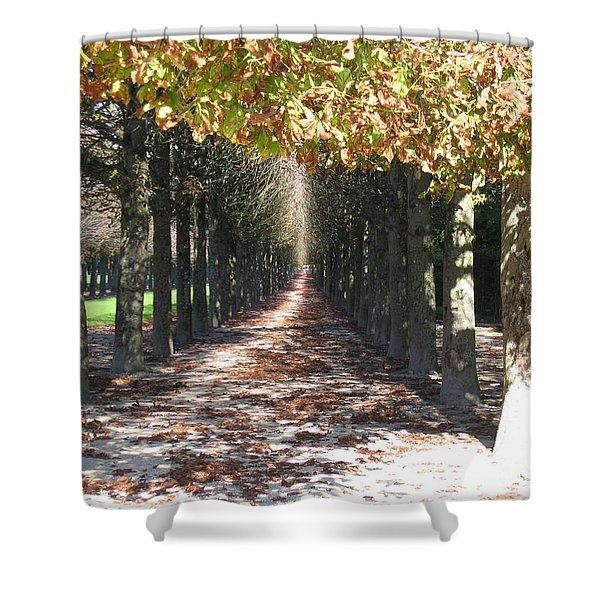 Fountainebleau - Under The Trees Shower Curtain