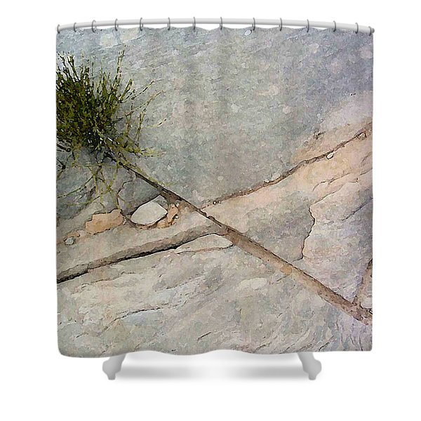 Fracture 1 Shower Curtain