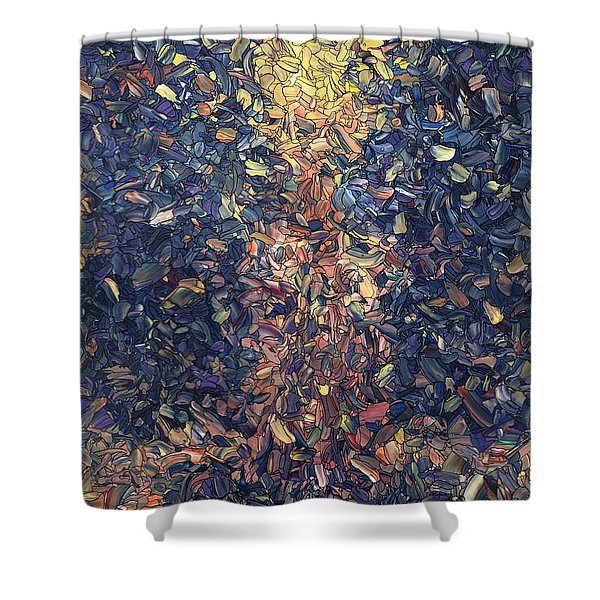 Fragmented Flame Shower Curtain