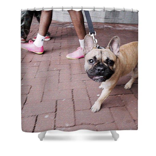 French Bulldog Polachrome Shower Curtain