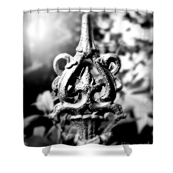 French Iron Shower Curtain