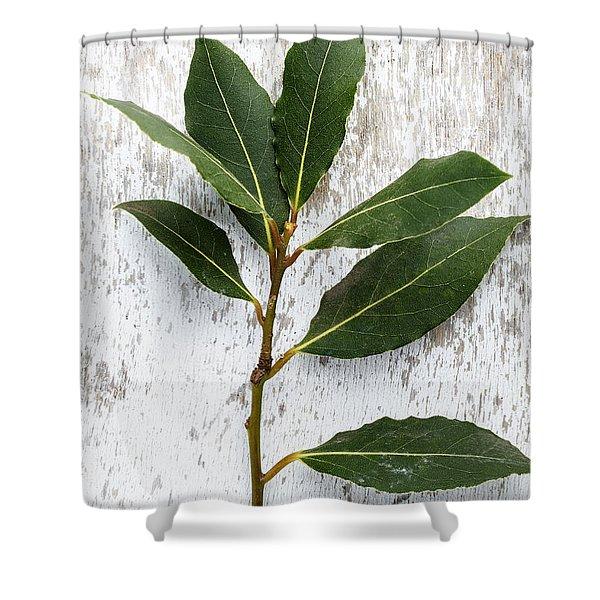 Fresh Laurel Shower Curtain