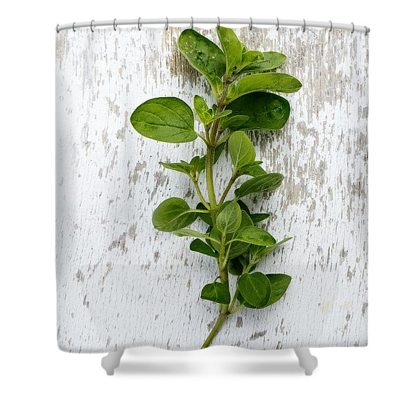 Fresh Oregano Shower Curtain