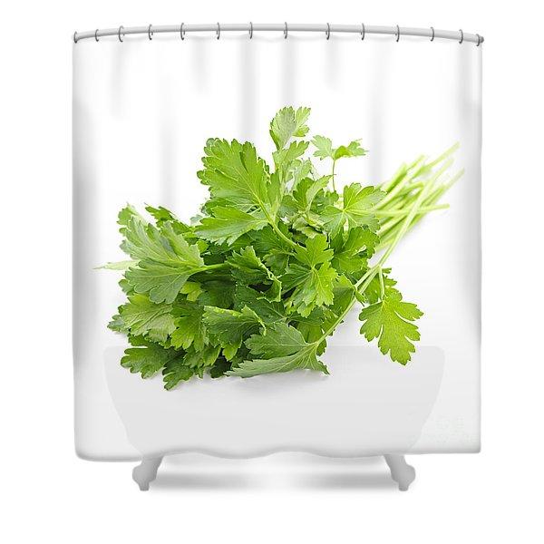Fresh Parsley Shower Curtain