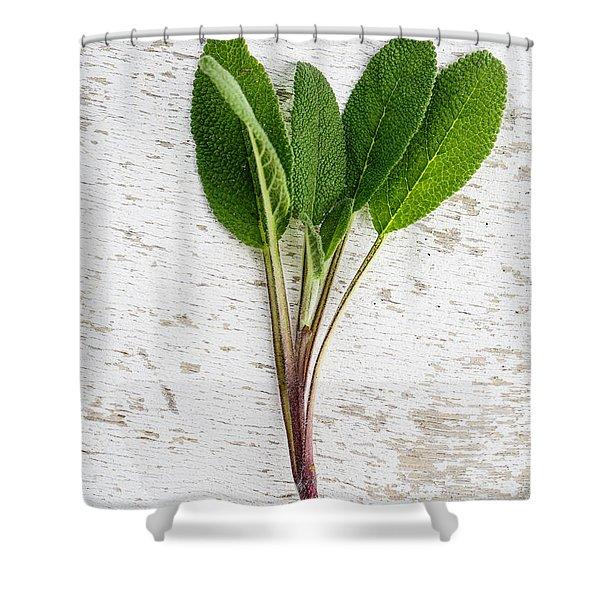 Fresh Sage Shower Curtain