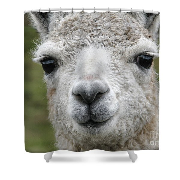 Friends From The Field Shower Curtain
