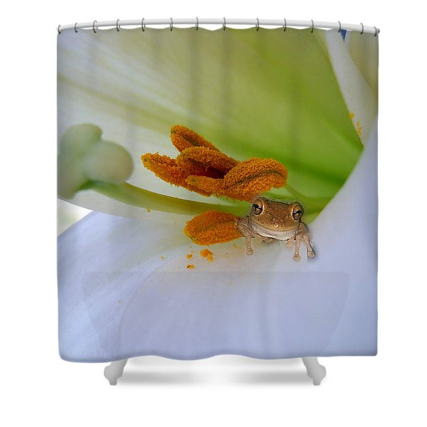 Frog In The Lily Shower Curtain