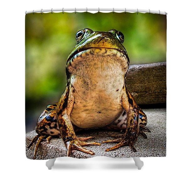 Frog Prince Or So He Thinks Shower Curtain