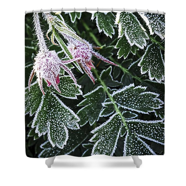 Frost On Plants In Late Fall Shower Curtain
