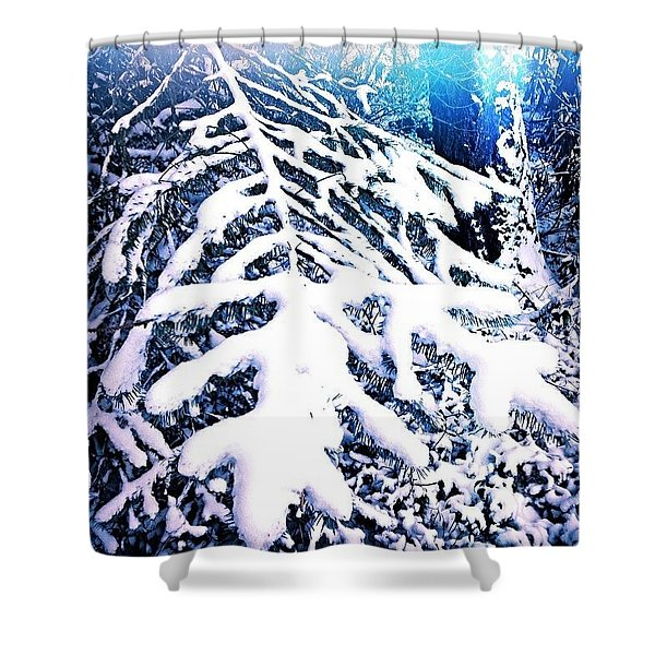 Frosted Blue Spruce Shower Curtain