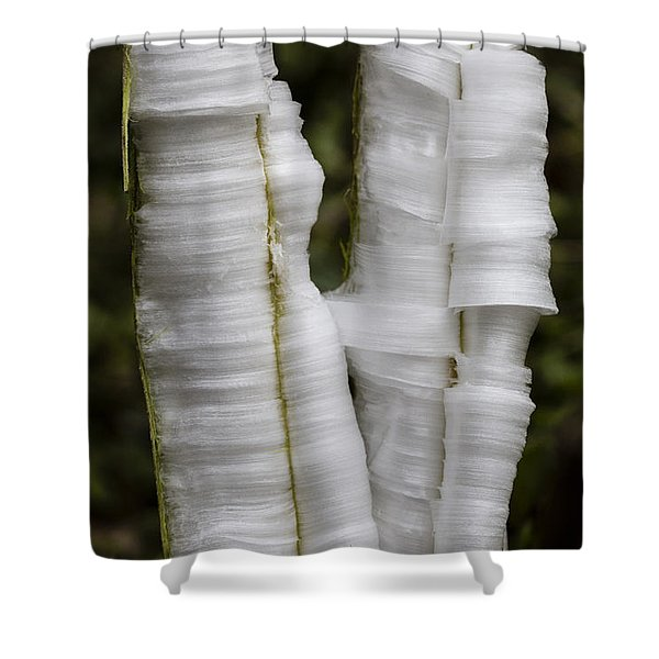 Frostweed Ice Curls Shower Curtain