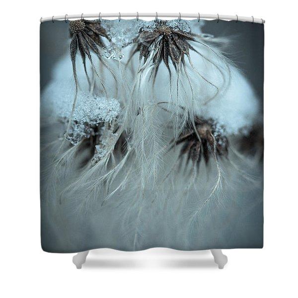 Frosty Dreams Shower Curtain