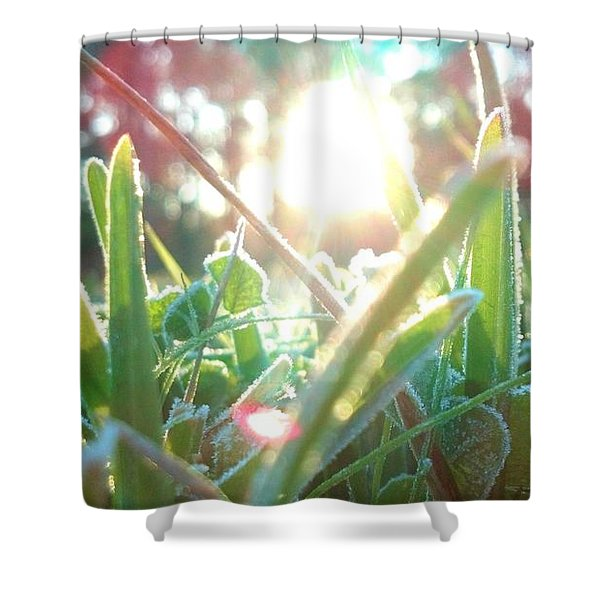 Frosty Flare Shower Curtain