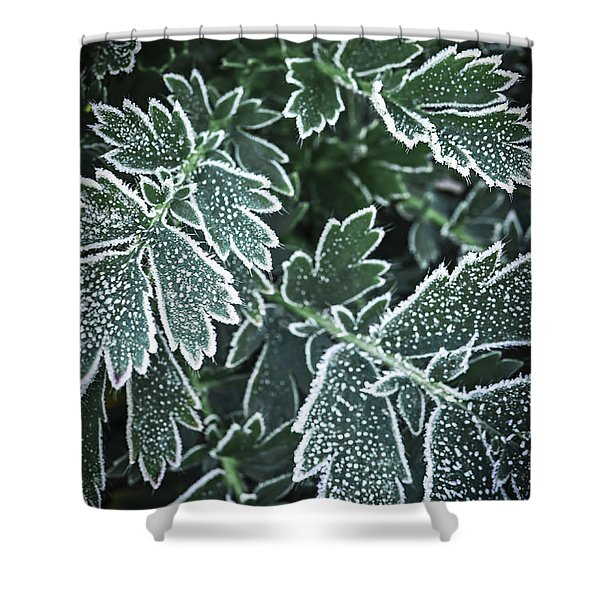 Frosty Leaves In Late Fall Shower Curtain