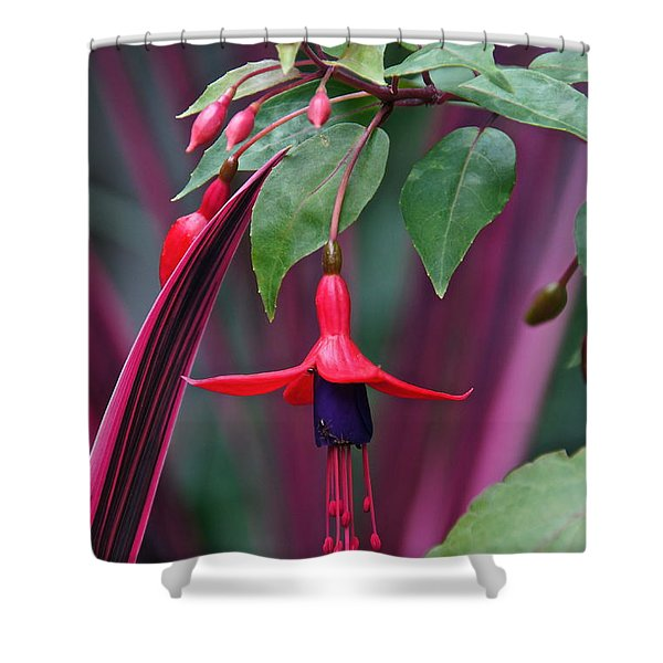 Fuchsia Delight Shower Curtain