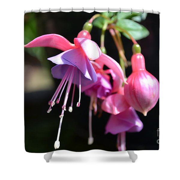 Shower Curtain featuring the photograph Fuchsia Flower by Scott Lyons