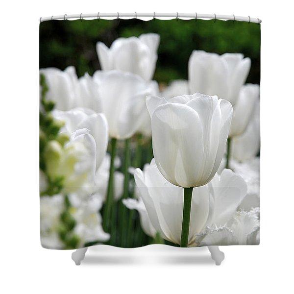 Garden Beauty Shower Curtain