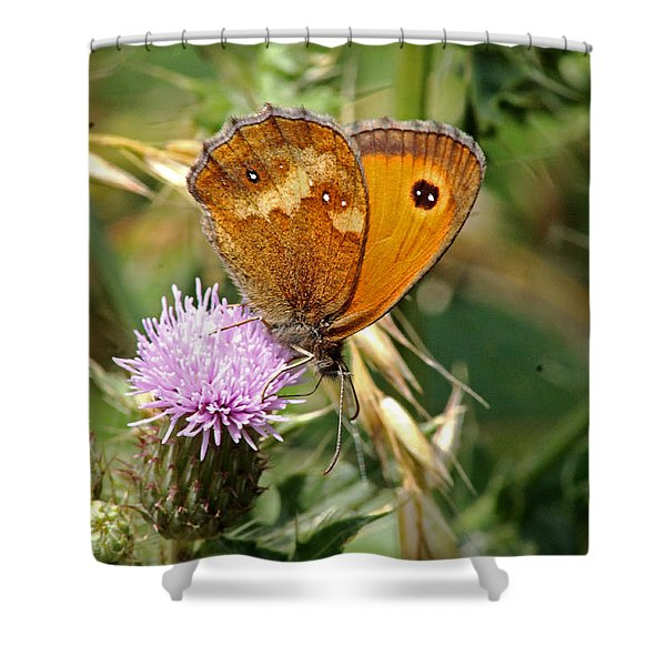 Gatekeeper Butterfly Shower Curtain