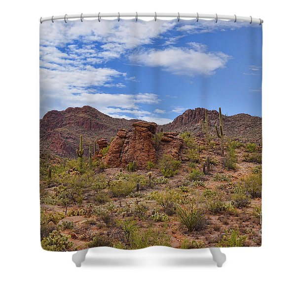 Gates Pass Scenic View Shower Curtain
